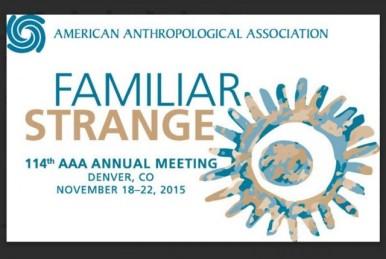 American-Anthropological-Association-2015-Annual-Meeting-Logo-w-Border-e1446059504323